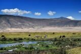 Marshland of Ngorongoro Conservation Area