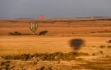 Morning Balloon Ride Landscape