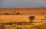 Morning Balloon Ride Landscape