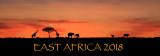 Africa Banner.jpg