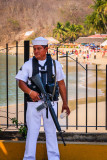 Mexican Security