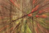 Abstract Forest and Woodland