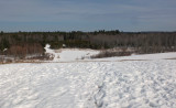 Beaver Pond City Forest 2-24-17.jpg