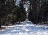 Logan Rd. DeMeritt Forest 2-28-17.jpg