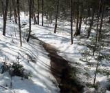 Stream  DeMeritt Forest 2-28-17.jpg