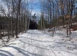 P B Trail  Along Kenduskeag b 3-3-17.jpg