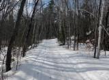 P B Trail  Along Kenduskeag  c 3-3-17.jpg