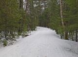 Logan Rd. DeMeritt Forest 3-9-17.jpg