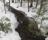 Stream DeMeritt Forest 3-9-17.jpg