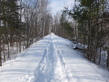 Trail Along Kenduskeag 3-16-17.jpg