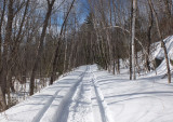 Trail Along Kenduskeag b 3-16-17.jpg