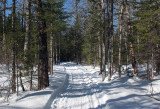 Glenburn Trails 3-20-17.jpg