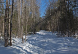 Glenburn Trails  d  3-20-17.jpg