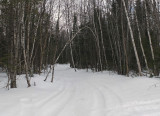 Glenburn Trails 3-30-17.jpg