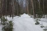 Glenburn Trails d 3-30-17.jpg
