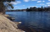Penobscot River 4-2-17.jpg