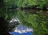 Little River 7-1-11-ed-pf.jpg
