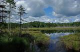 Papoose Pond 7-31-10-pf.jpg
