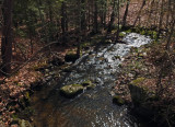 Small Stream  Kenduskeag Trail 5-3-17.jpg