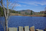 Little Long Pond 5-4-17.jpg