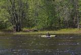 Kayaker Kenduskeag Stream 5-21-17.jpg