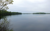 Perch Pond  5-24-17.jpg