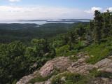Sargent S. Ridge Trail b 6-30-11-pf.jpg
