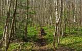 Goose Ridge Trail 5-7-12-ed.jpg