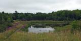Beaver Pond City Forest 8-12-17.jpg