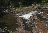 Mariaville Falls 8-14-17.jpg