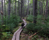Kelley - Hidden Ponds Trail  9-9-17 .jpg