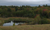 Beaver Pond City Forest b 9-19-17.jpg