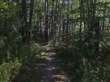 Trail Caribou Bog 9-23-17.jpg