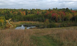 Beaver Pond City Forest 9-27-17.jpg
