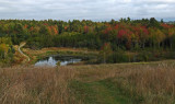 Beaver Pond City Forest 9-27-17  .jpg