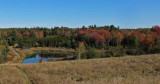 Beaver Pond City Forest 10-3-17.jpg