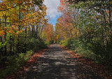 Newport Rail trail 10-10-17.jpg