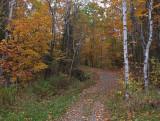 Kenduskeag SM Trail 10-14-17.jpg