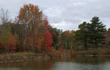 Small Pond  Caribou Bog 10-16-17.jpg