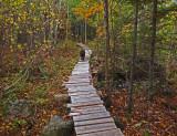Kelley - Trail Caribou Bog 10-16-17.jpg