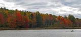 Black Pond Caribou Bog 10-16-17.jpg