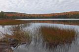 Ducktail  Pond b 10-7-17.jpg