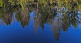 Reflection Mariaville Falls 10-27-17.jpg