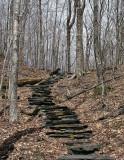 Near End of Moose Pond Trail 4-25-10-ed.jpg