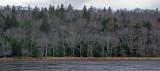 Across - Little Long Pond 11-22-13-ed.JPG