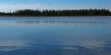 Perch Pond b 9-21-17.jpg