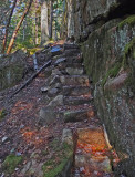 Trail From Harbor Brook Trail  11-29-17.jpg