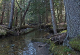 Harbor Brook c 11-29-17.jpg