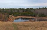 Beaver Pond City Forest 11-12-17.jpg