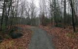 Trail Along Kenduskeag 12-6-17.jpg